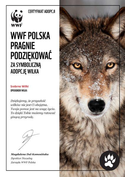 organizacja imprez firmowych śląsk, Kraków, Wrocław